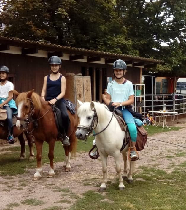 Talking_Horse_Farm_Schwegenheim_Kinderreitunterricht