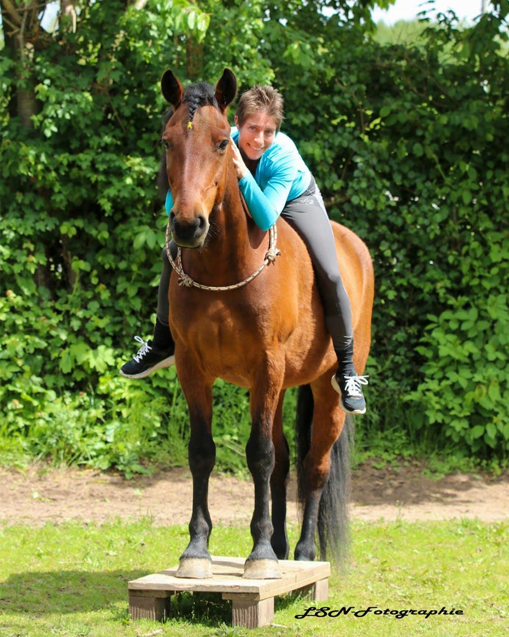 Horse-Talk-Pferdefluestern_Bild_2