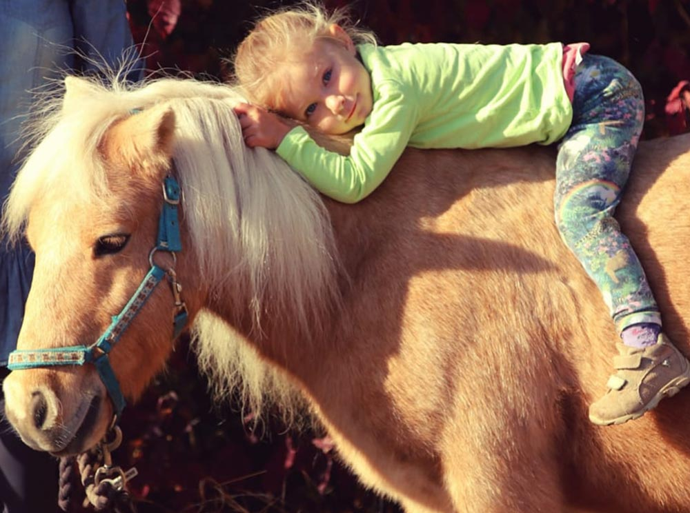 Kindergeburtstag_Talking_Horse-Farm_4