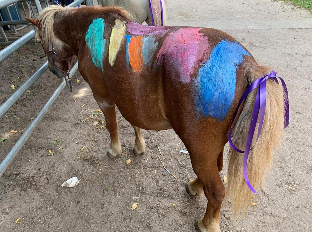 Kindergeburtstag_Talking_Horse_Farm_2